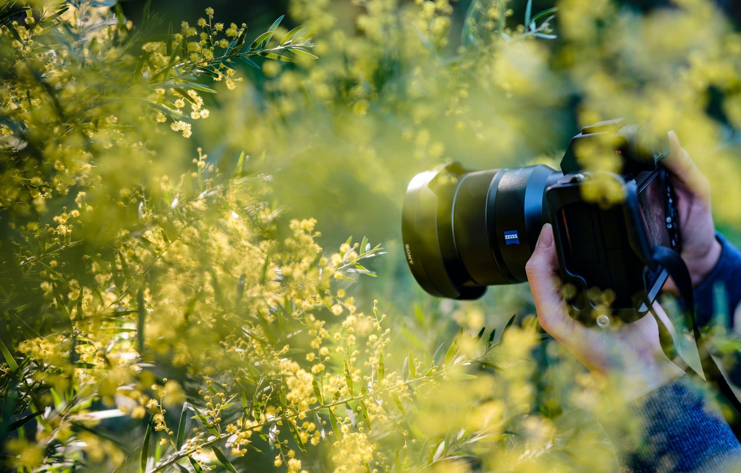 Photographie et traitement d'image