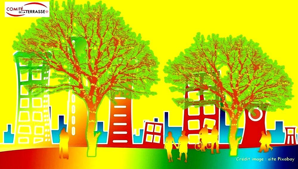 L'urbanisation du quartier